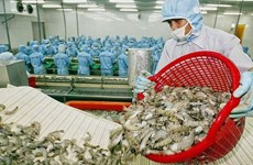 Especialistas pronostican panorama positivo para exportaciones acuáticas de Vietnam a China