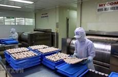 Aumenta valor de la inversión extranjera directa en Ciudad Ho Chi Minh