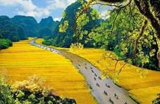 Lanza provincia vietnamita de Ninh Binh campaña de promoción turística en aplicación de medios TikTok