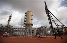 Preocupa a Malasia radioactividad por la producción de tierras raras