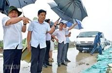 Urge prevención de la erosión costera en extremo sur de Vietnam
