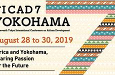 Participa delegación vietnamita en Conferencia Internacional de Tokio sobre Desarrollo Africano