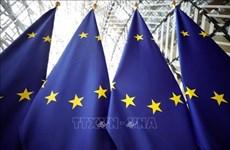 Acciones unilaterales en Mar del Este socavan seguridad marítima regional, según UE