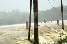 Al menos tres muertos por el tifón Podul en Vietnam