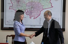 Atrae provincia vietnamita inversionistas japoneses