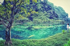Provincia vietnamita de Ninh Binh por celebrar con éxito el Año de Turismo