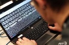 Sufrió Vietnam siete mil ataques cibernéticos en primeros ocho meses de 2019