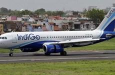 Abrirá aerolínea IndiGo segunda ruta directa a Vietnam