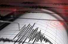 Sacude terremoto de magnitud 5,0 en la escala de Richter a Indonesia