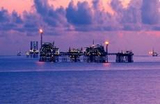 Sobrepasa empresa petroletra mixta Vietnam-Rusia numerosos objetivos