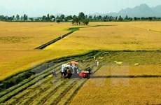 Localidades de Vietnam y Japón aspiran a incrementar lazos multisectoriales