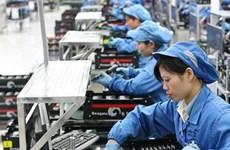 Perfecciona Vietnam Código del Trabajo a favor de igualdad de género
