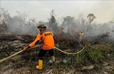 Más de 39 mil personas afectadas por humo en Indonesia
