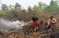 Indonesia cierre aeropuerto y escuelas debido a incendios forestales
