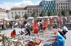 Celebran Día de Cultura Vietnamita en República Checa