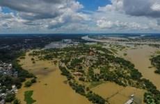 Graves daños en provincias tailandesas por inundaciones prolongadas