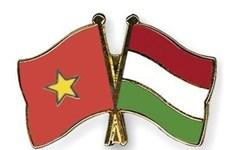 Encuentro amistoso Vietnam- Hungría se propone incrementar amistad binacional