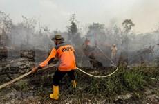 Impide densa niebla causada por incendios el aterrizaje de aviones en Indonesia