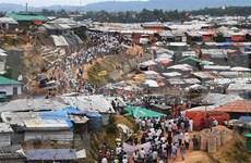 Alerta ONU sobre situación de violencia contra los rohinyás en Myanmar
