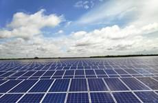 Proyectan construcción de instalaciones de energía solar en provincia vietnamita