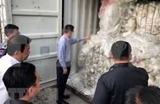 Camboya reenvía desechos plásticos a Estados Unidos y Canadá