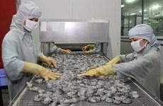 Superan exportaciones de camarones vietnamitas 1,93 mil millones de dólares