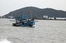 Vietnam en buen camino para eliminar tarjeta amarilla de la UE