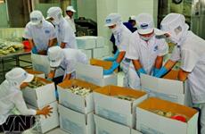 Industria de procesamiento y envasado de Vietnam registra crecimiento estable