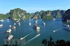 Reconocen a la Bahía vietnamita de Ha Long entre las atracciones más populares de Asia