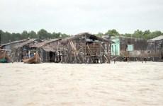 Instan en Vietnam a inspeccionar situación de erosión en Delta de Mekong