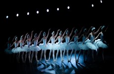 """Presentarán artistas vietnamitas obra clásica de ballet """"El lago de los cisnes"""""""