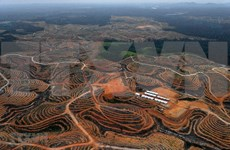 Pronostican que nueva capital de Indonesia atraerá a 1,5 millones de habitantes