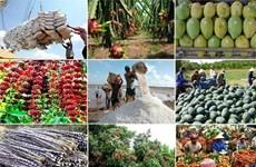 Agrosilvicultura y acuicultura de Vietnam logran altos ingresos en nueve meses de 2019