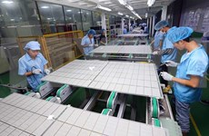 Atrae Vietnam amplio abanico de inversores