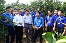 Intensifican Vietnam y Laos los intercambios juveniles