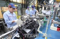 Industria auxiliar de la provincia vietnamita de Vinh Phuc experimenta avance significativo