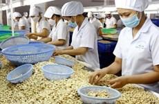 Destacan ventajas del intercambio comercial entre Vietnam e Israel