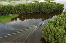 Lanzan en Vietnam concurso de pintura en respuesta al cambio climático