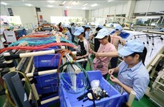 Provincia vietnamita de Vinh Phuc logra resultados económicos alentadores