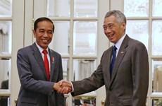 Alcanzan Singapur e Indonesia acuerdo sobre temas aéreos  y militares