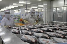 Sube Vietnam 10 escaños en el ranking mundial de competitividad económica
