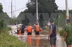 Vietnam y Japón intercambian experiencias en prevención de inundaciones