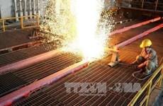 Grupos vietnamita y japonés intensifican cooperación en suministro de acero