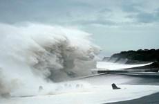 Dos marineros vietnamitas se encuentran a bordo de un barco inundado en Japón