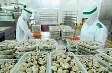 China permite importación de otros tres productos acuáticos de Vietnam