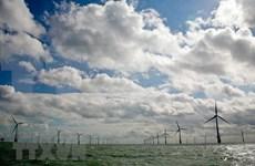 """Empresa japonesa apoya a Indonesia en establecimiento de sistema de """"energía verde"""""""