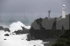 Rescatan un marinero vietnamita tras naufragio en Japón
