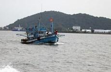 Aplica Vietnam recomendaciones de la UE contra la pesca ilegal, no declarada y no reglamentada
