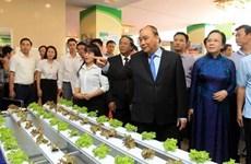 Insta Premier a Hai Phong a ser pionero en modernización rural