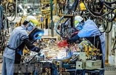 Vietnam: punto brillante en atracción de inversiones extranjeras en ASEAN